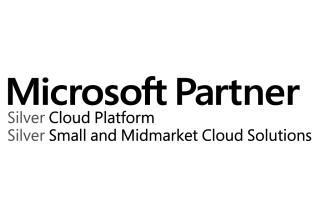 Ecocloud Microsoft Silver Partnership logo